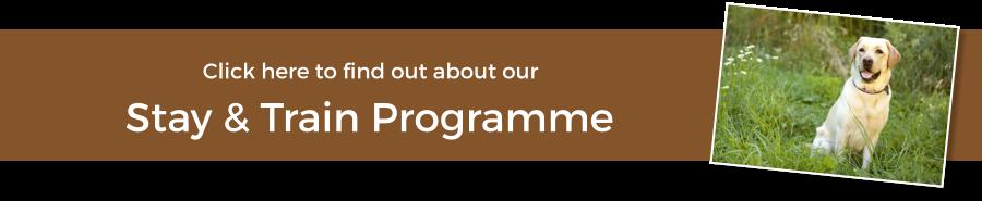 Stay & Train Programme
