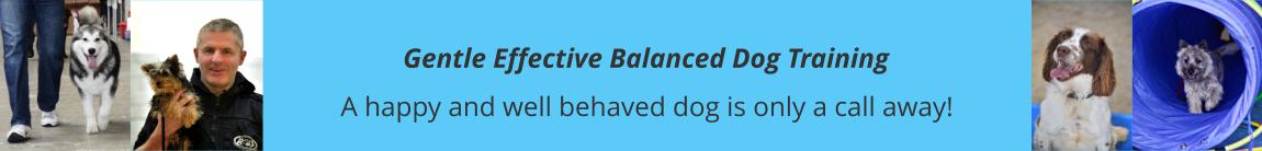 Balanced Dog Training
